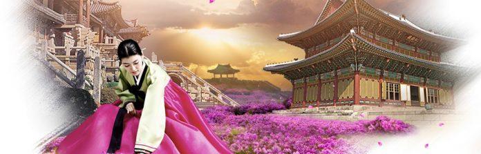 dịch thuật tiếng Hàn ngành chính trị học uy tín